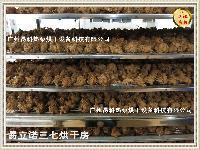 YKP易立诺-三七烘干机-厂家直销