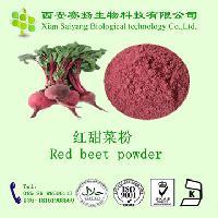 * 厂家直供优质红甜菜粉 质量保证 价格优惠