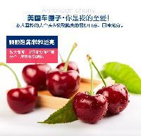 马来西亚水果进口报关代理、代办报关公司