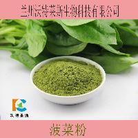 菠菜酵素 菠菜粉  菠菜原粉  货源广 物流快