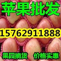 红富士苹果产价格