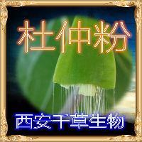 杜仲粉 厂家生产植物提取物杜仲浓缩粉