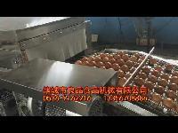 鹌鹑蛋清洗机 鹌鹑蛋洗蛋机