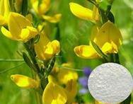 天然染料木素98% 金雀异黄酮98% 厂家直销