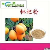厂家现货 枇杷粉/果粉固体饮料 食品保健品原料 1公斤起订