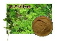 厂家直销 新鲜优质欧芹提取物 棕黄色精细粉末 10:1