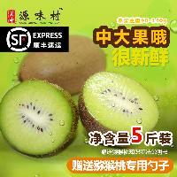 优质周至翠香猕猴桃 6斤装中大果 配专用说明书和勺子 顺丰包邮
