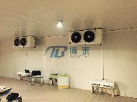 冷库设备安装 高端配置制冷工程 蔬菜保鲜库