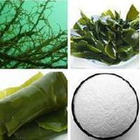 褐藻粉 褐藻糖胶80%  兰州厂家现货包邮