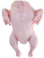 进口整鸡全鸡鸡肉去头去爪
