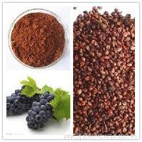 葡萄籽提取物 原花青素 厂家包邮 品质保证