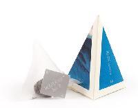 简山晨·简·金字塔·普洱生茶