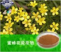 蜜蜂花提取物 香缝草提取物 厂家直销