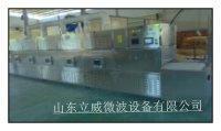 隧道式休闲食品烘干设备   微波设备