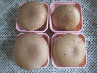 常年供应新鲜蘑菇 褐菇 牛排菇