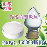 酪蛋白磷酸肽