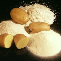 土豆提取物| 土豆蛋白粉
