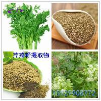 芹菜籽提取物10:1