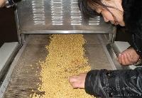 全自动连续式红豆,芝麻微波烘干烘烤设备