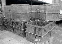 不锈钢杀菌篮