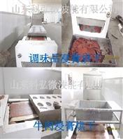 KH-HPTN微波调味浸膏干燥设备