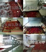 微波大枣干燥杀菌设备厂家