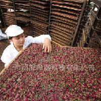 玫瑰花茶高效节能空气能高温热泵烘干机厂家
