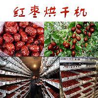 红枣烘干机 红枣节能热泵烘干设备 专业制造