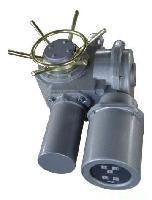 DZW45-24-A00-WK电动执行器