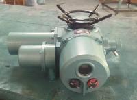 DZW60-24W/T调节型电动执行器