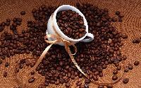 进口咖啡豆报关清关