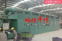 红豆杉烘干专用网带式干燥机