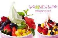 进口酸奶冰淇淋粉/*澳洲酸奶冰淇淋粉