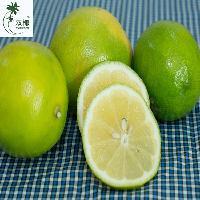喷雾干燥柠檬粉 柠檬果汁粉-纯天然柠檬粉-不含香精色素 免费样品