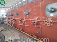 新疆辣椒带式干燥机