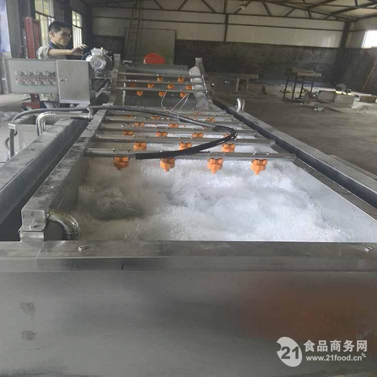 专业厂家供应气泡果蔬清洗机 品质保证