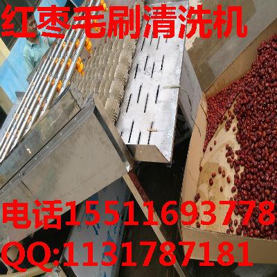 和田大红枣清洗机价格