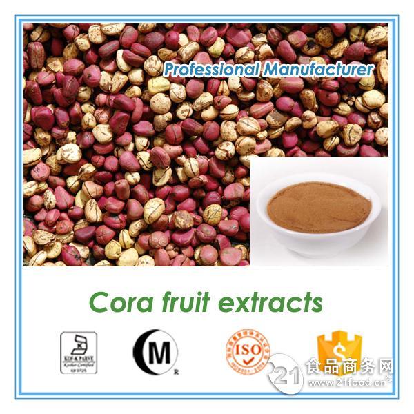 柯拉果提取物 Kola nut extract 10:1