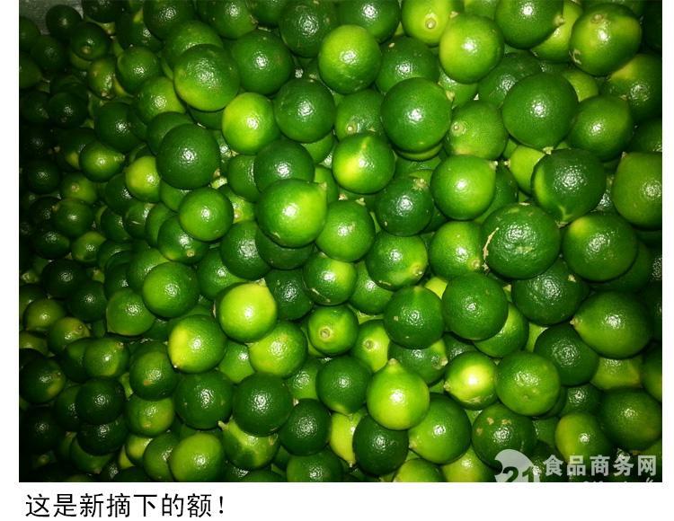 海南青金桔 特产 新鲜水果小柠檬500g