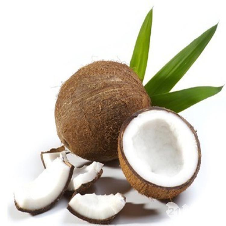 厂家生产纯天然椰浆粉  无添加 果肉 供食品厂 奶茶店专用