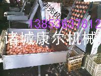 供应康尔卤鸡蛋成套流水线剥壳机节能型