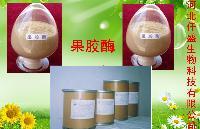 直销食品级果胶酶酶制剂