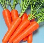 食品级天然胡萝卜素