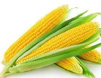 食品级(玉米黄色素)