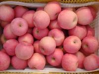 供应优质红富士苹果产地批发价格
