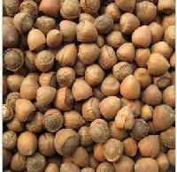 北京東北榛子專賣 精美禮盒