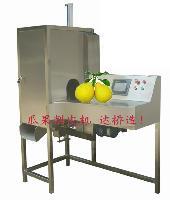 厂家供应沙田柚削皮机柚子加工设备
