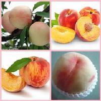 水蜜桃粉 天然水果粉 廣東廣州皓海