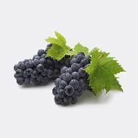 夏黑葡萄上市了