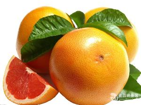 葡萄柚提取物